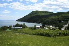 Berg und Ozean, eine landwirtschaftliche Landschaft Lizenzfreie Stockbilder