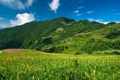 Berg und schönes cloudscape Stockfotos