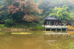 Berg und Tempel Nanjings Xixia im Herbst Lizenzfreie Stockfotografie