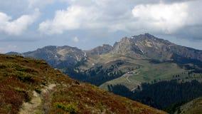 Berg und Wiese Stockfotos