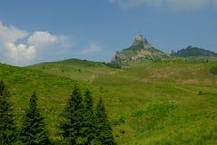 Berg und Wiesenlandschaft Stockfotografie