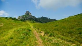 Berg und Wiesenlandschaft Stockbild