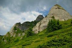 Berg und Wiesenlandschaft Lizenzfreie Stockbilder