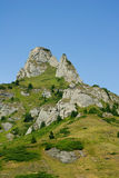 Berg und Wiesenlandschaft Stockbilder