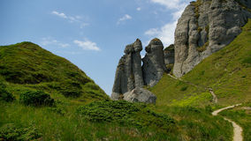 Berg und Wiesenlandschaft Lizenzfreies Stockbild