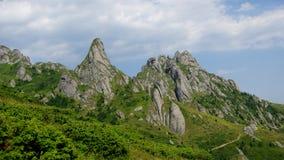 Berg und Wiesenlandschaft Lizenzfreie Stockfotografie