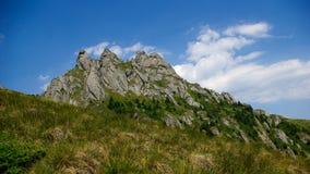 Berg und Wiesenlandschaft Lizenzfreies Stockfoto