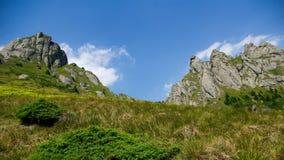 Berg und Wiesenlandschaft Lizenzfreie Stockfotos