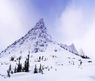 berg västra siberia Royaltyfri Fotografi