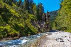 Berg vaggar, floden i reserven Nationalpark Berchtesgaden, Bayern, Tyskland Royaltyfri Bild
