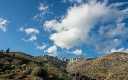 Berg van sequoia nationaal bos royalty-vrije stock fotografie