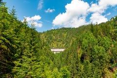 Berg verborgen vloek binnen het bos stock afbeelding