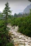 Berg Vysoke Tatry (höga Tatras) Royaltyfri Bild