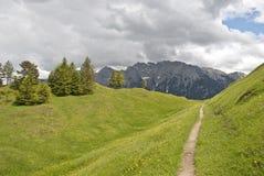 Berg-weg stock foto's