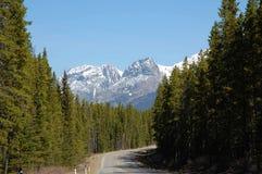 Berg, weg en bossen Stock Fotografie