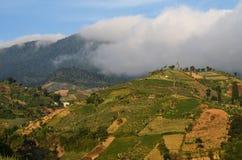 Berg in Wolken, Java, Indonesië Stock Foto