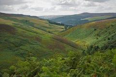 Bergachtig landschap Royalty-vrije Stock Afbeelding