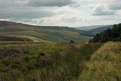 Bergachtig landschap Stock Afbeeldingen