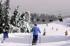 Bergaf het skiån Royalty-vrije Stock Afbeeldingen