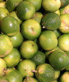 Bergamia citrus or green  bergamot  for sale to the greengrocery Royalty Free Stock Photo
