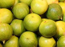 Bergamia citrus or green bergamot for sale to the greengrocery. Many bergamia citrus or green bergamot for sale to the greengrocery royalty free stock photography