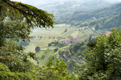 BERGAMO, LOMBARDY/ITALY - 25 JUNI: Mening van Citta Alta in Berg Royalty-vrije Stock Foto's
