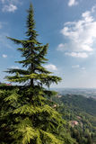 BERGAMO, LOMBARDY/ITALY - 25 JUNI: Mening van Citta Alta in Berg Royalty-vrije Stock Fotografie