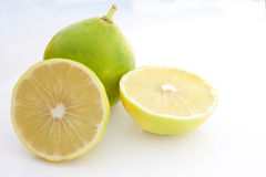 Bergamot. A pair of bergamot against a white background royalty free stock photo