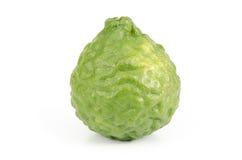 Bergamot. Close up image of bergamot on white background stock image