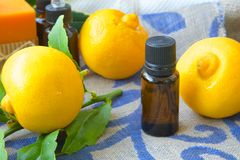 Bergamot essential oil. A dropper bottle of bergamot essential oil. Bergamot in the background stock images