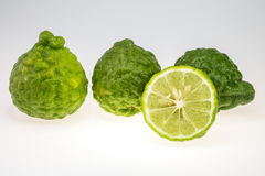Bergamot. Is a food and medicinal herbs royalty free stock images