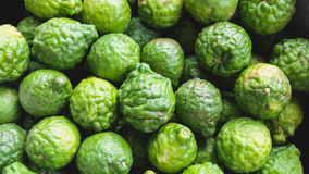 Bergamot. Is a fragrant fruit the size of an orange, with a yellow color similar to a lemon royalty free stock image