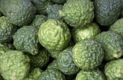 Bergamot Stock Photos