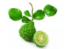 Bergamot fruit with leaf. Fresh of bergamot fruit with leaf on white background royalty free stock photo