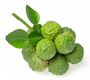 Bergamot fruit. On white background stock image