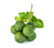 Bergamot fruit. On white background royalty free stock photo