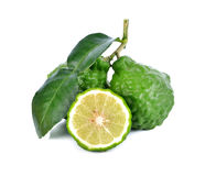 Bergamot fruit. On a white background stock photos