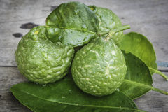 Bergamot with green leafs on wood. Background Stock Images