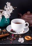 Bergamot green tea. And blossom apricot on table royalty free stock photos