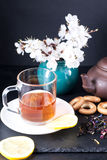 Bergamot green tea. And blossom apricot on table royalty free stock image