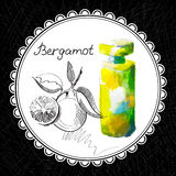 Bergamot. Health and Nature Collection. Aromatic bergamot oil (watercolor and graphic illustration Royalty Free Stock Image