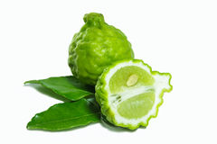 Bergamot Stock Photography