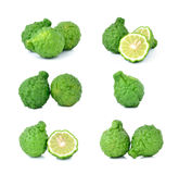 Bergamot isolated white background. royalty free stock photography