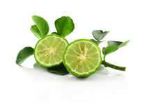 Bergamot isolated white background. stock images