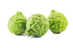 Bergamot isolated on white background. Kaffir isolated Royalty Free Stock Image