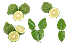 Bergamot kaffir lime leaves herb fresh ingredient isolated set Stock Photos