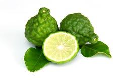 Bergamot and kaffir lime leaves. On white background royalty free stock photos