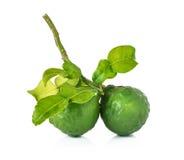 Bergamot and kaffir lime leaves Royalty Free Stock Image
