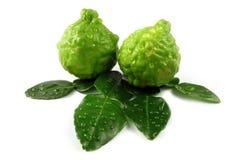 Bergamot and leaves. A beautiful fresh bergamot and bergamot leaves on white background stock image