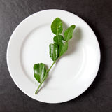 Bergamot leaves in the plate Royalty Free Stock Photos
